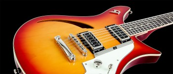 Double Cat 12-String